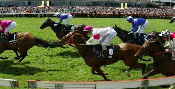Horse-Racing-SEO-Lead-Generation-and-Social-Media